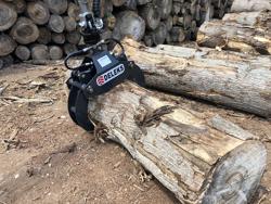 grappin à bois pour mini pelles et grues forestières modèle dk 10